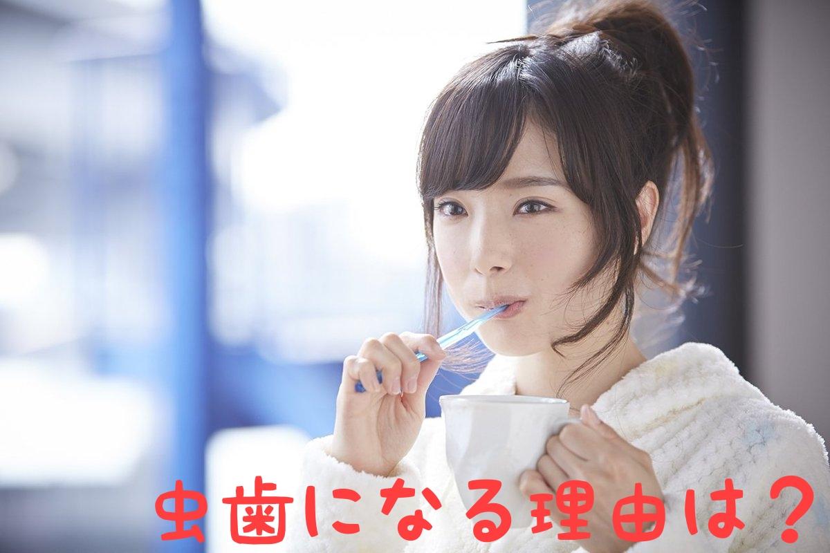 f:id:nakanobushika:20190401075835j:plain
