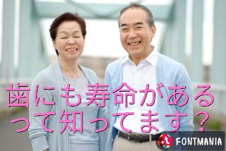 f:id:nakanobushika:20190524083701j:plain