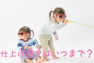 f:id:nakanobushika:20190612080409j:plain