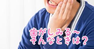 f:id:nakanobushika:20190708083715j:plain
