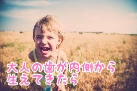 f:id:nakanobushika:20190802231628j:plain