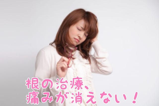 f:id:nakanobushika:20200520082301j:image