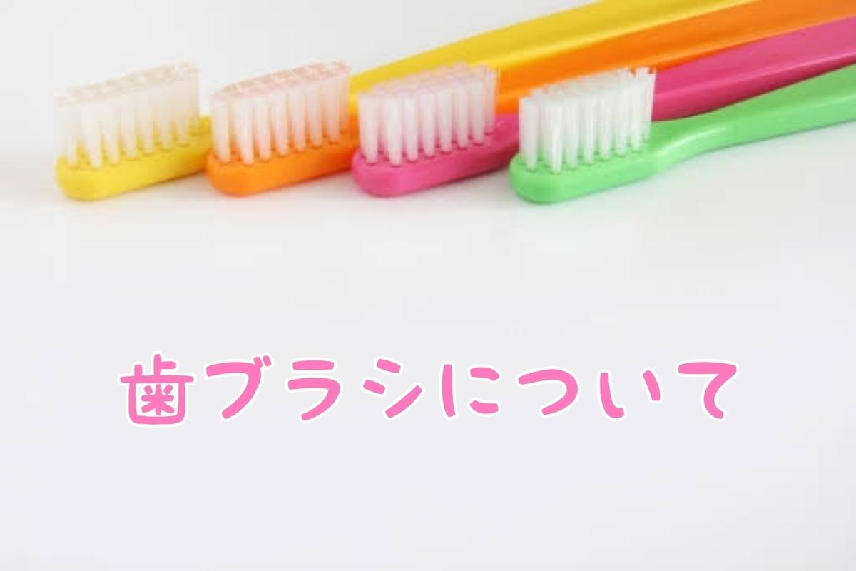 f:id:nakanobushika:20200919075812j:plain