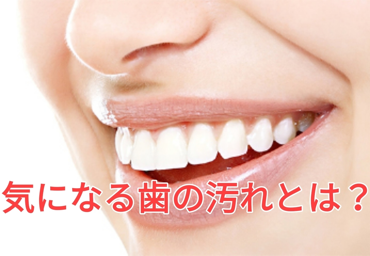 f:id:nakanobushika:20201023080840j:plain