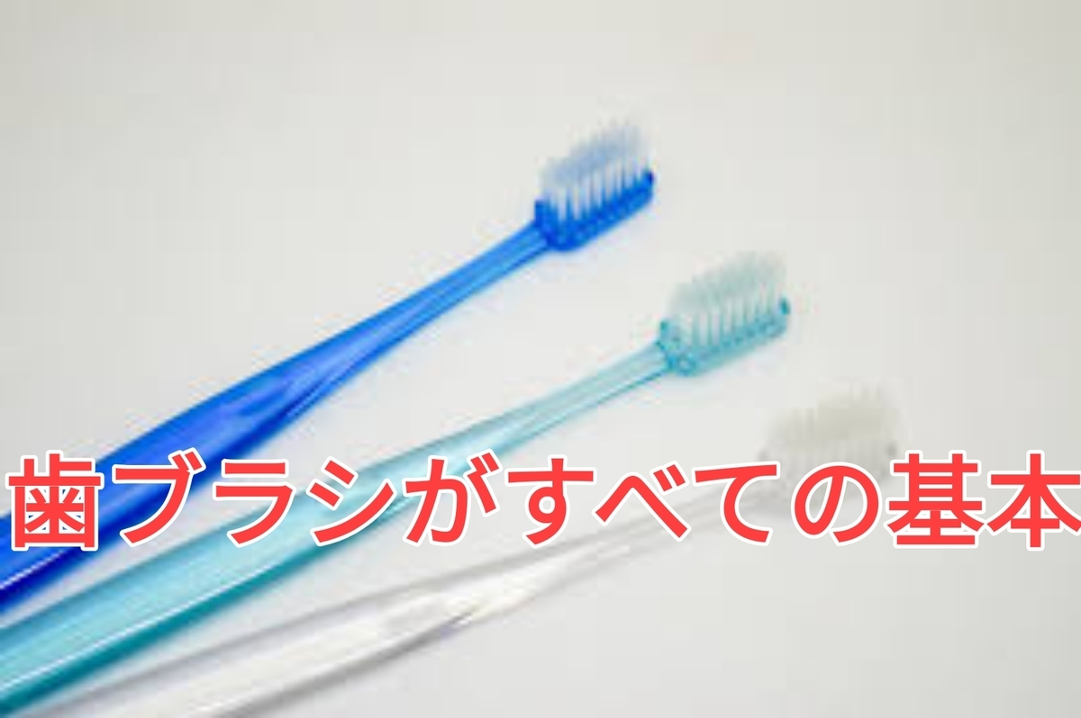 f:id:nakanobushika:20201029191427j:plain