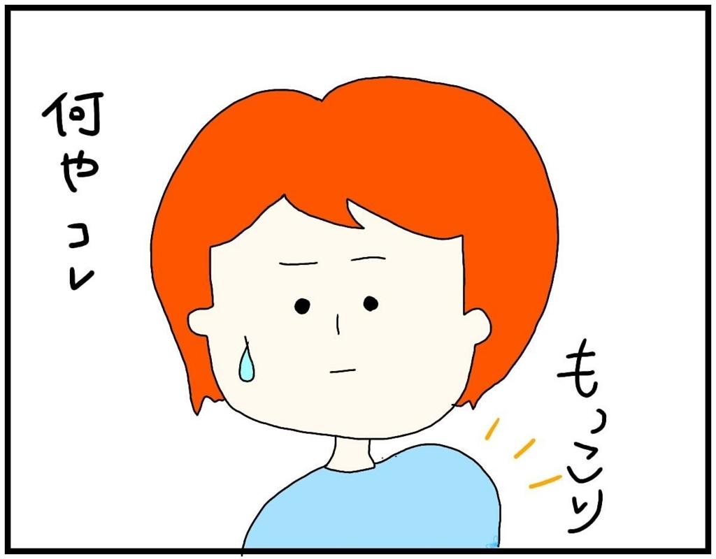 f:id:nakanomaruko:20180604002425j:plain