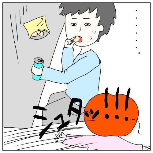 f:id:nakanomaruko:20190325013424j:plain