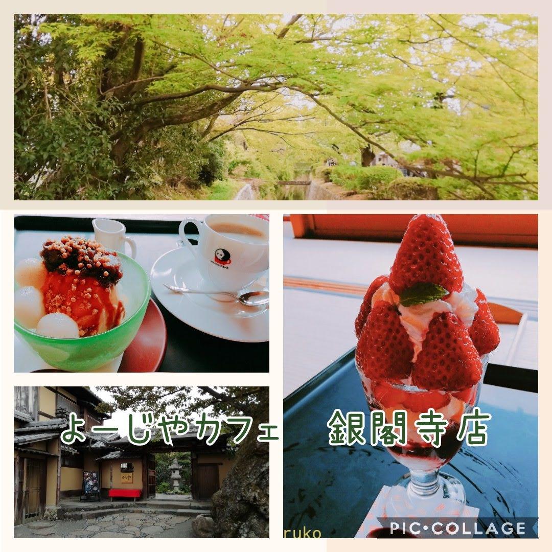f:id:nakanomaruko:20190423104829j:plain