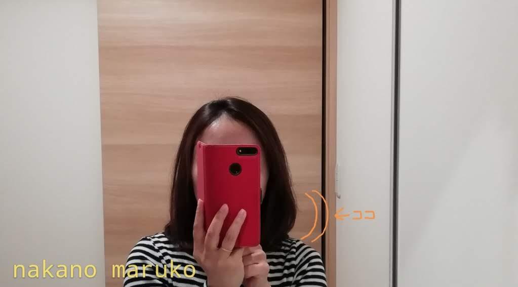 f:id:nakanomaruko:20190512232415j:plain
