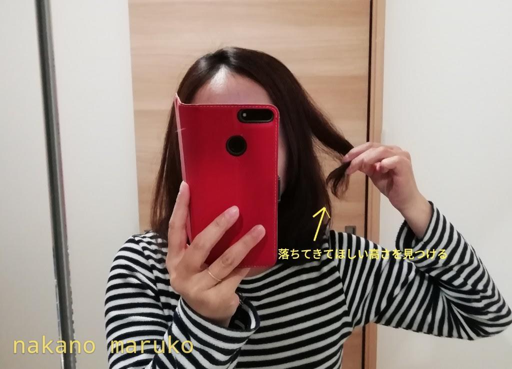 f:id:nakanomaruko:20190512232658j:plain