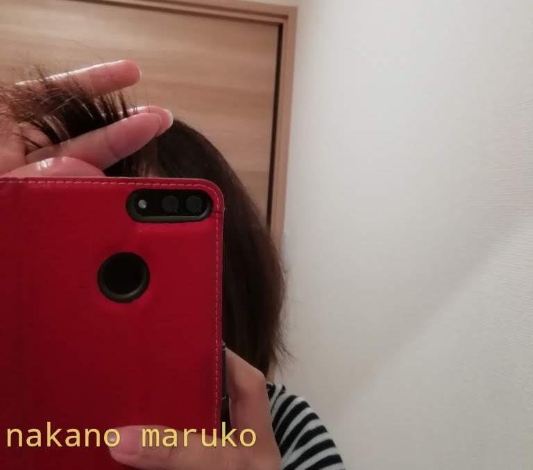 f:id:nakanomaruko:20190512234143j:plain