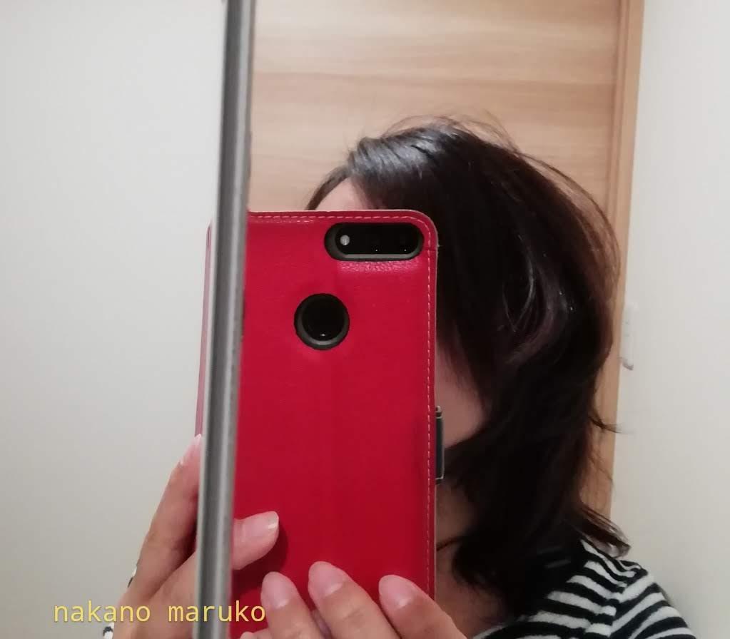 f:id:nakanomaruko:20190513001954j:plain