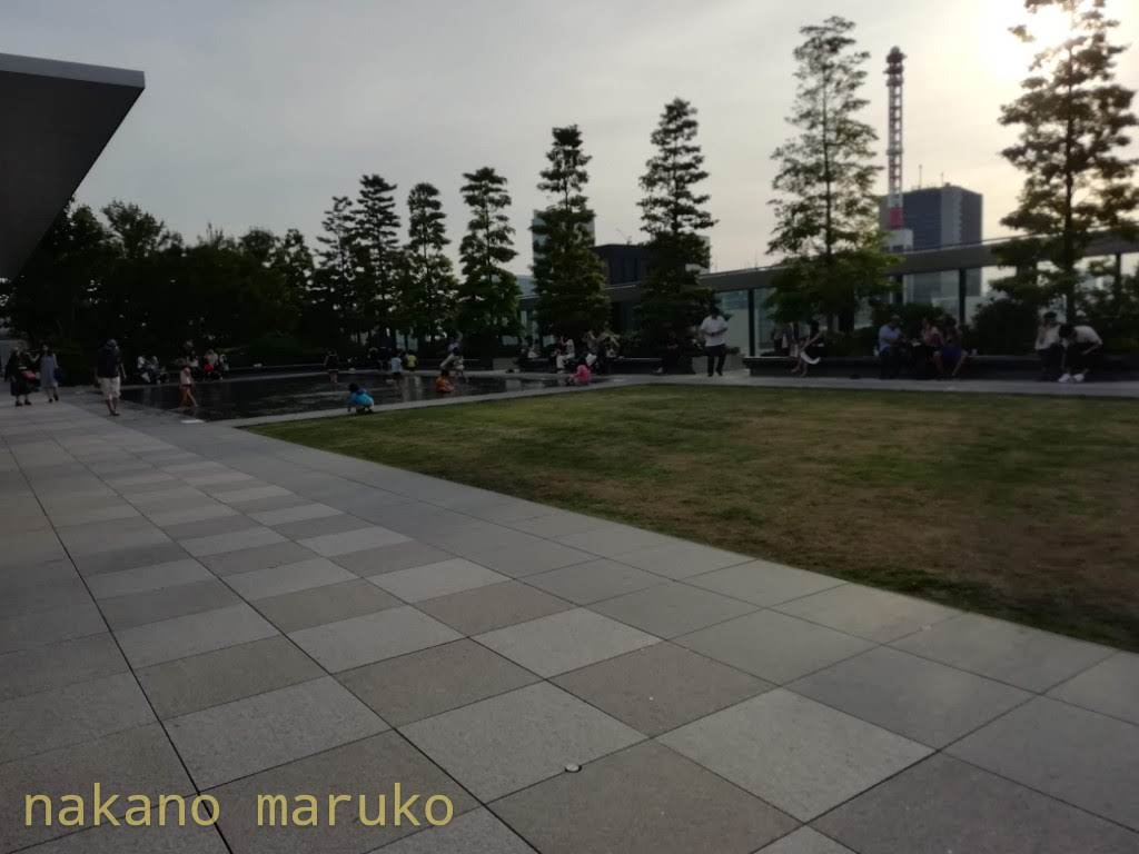 f:id:nakanomaruko:20190602202043j:plain