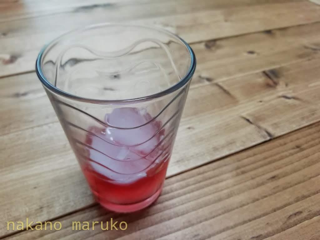 f:id:nakanomaruko:20190610220028j:plain