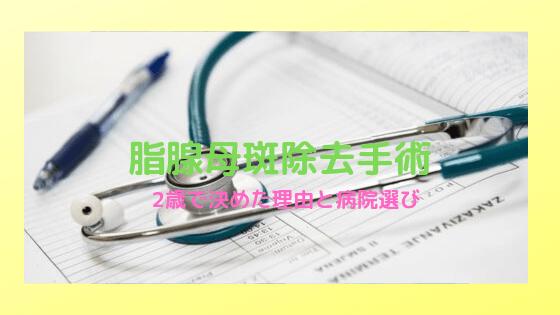 f:id:nakanomaruko:20191002232331p:plain