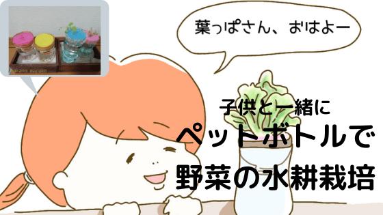 f:id:nakanomaruko:20200316103838p:plain