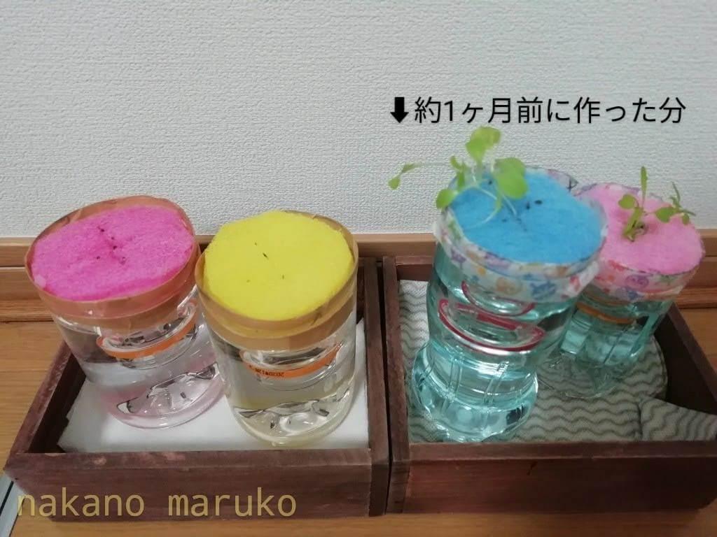 f:id:nakanomaruko:20200316110208j:plain