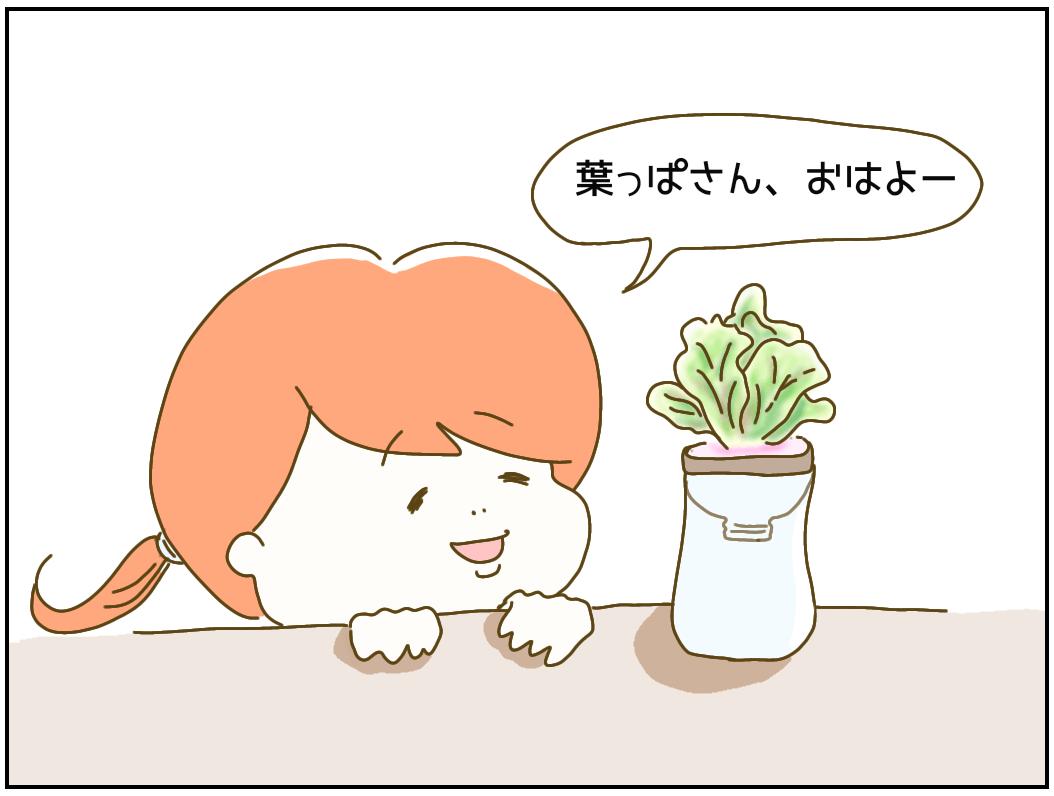 f:id:nakanomaruko:20200316111240p:plain