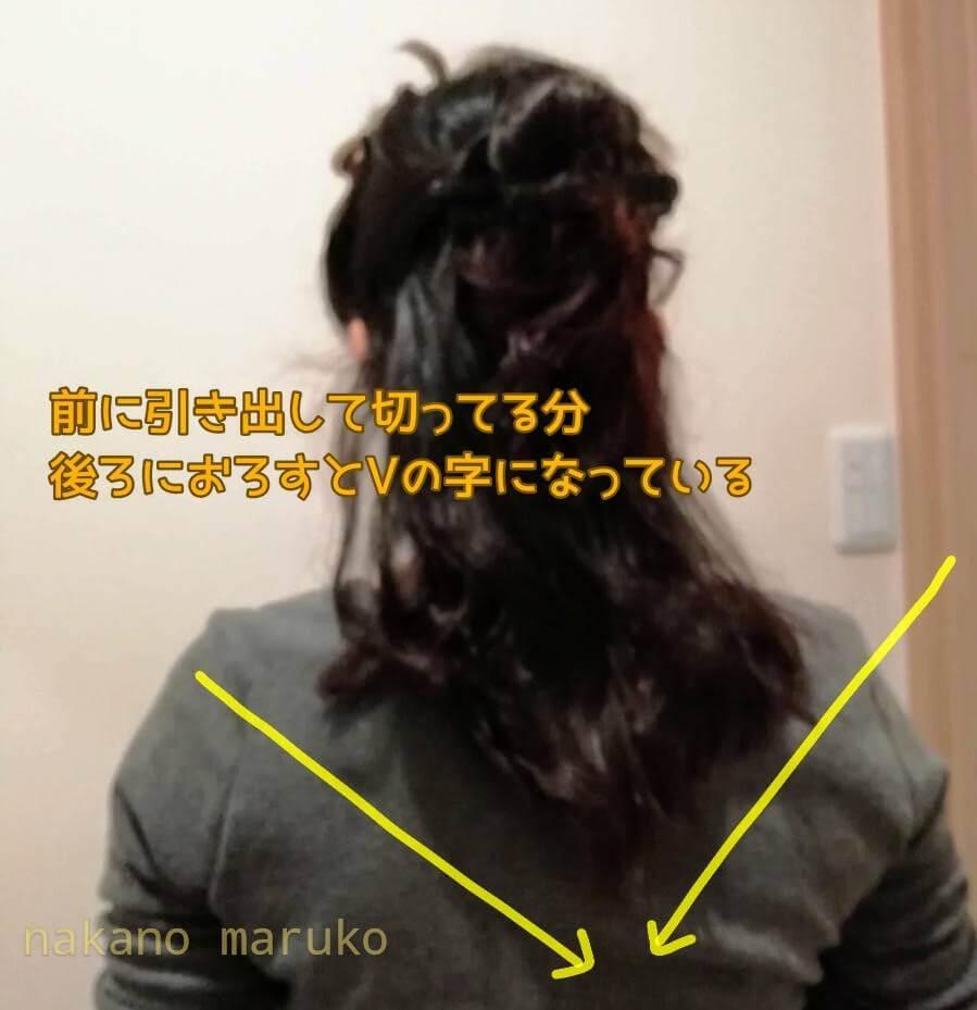 f:id:nakanomaruko:20200511150241j:plain