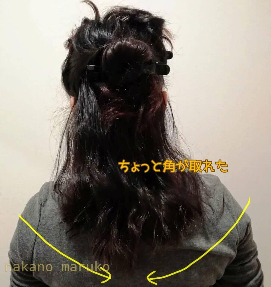 f:id:nakanomaruko:20200511150727j:plain