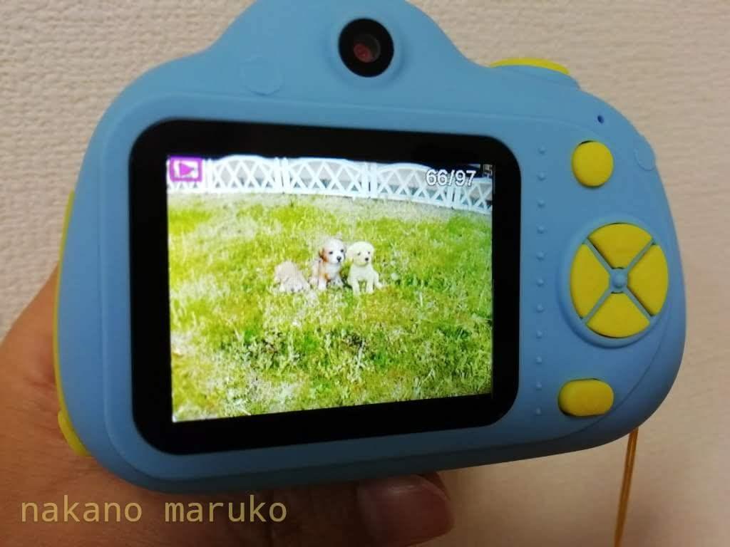 f:id:nakanomaruko:20200530214029j:plain