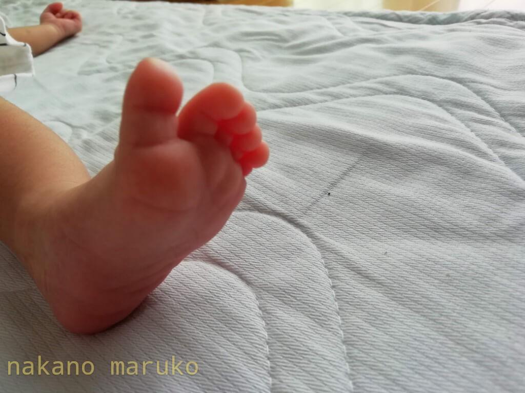 f:id:nakanomaruko:20200813134210j:plain