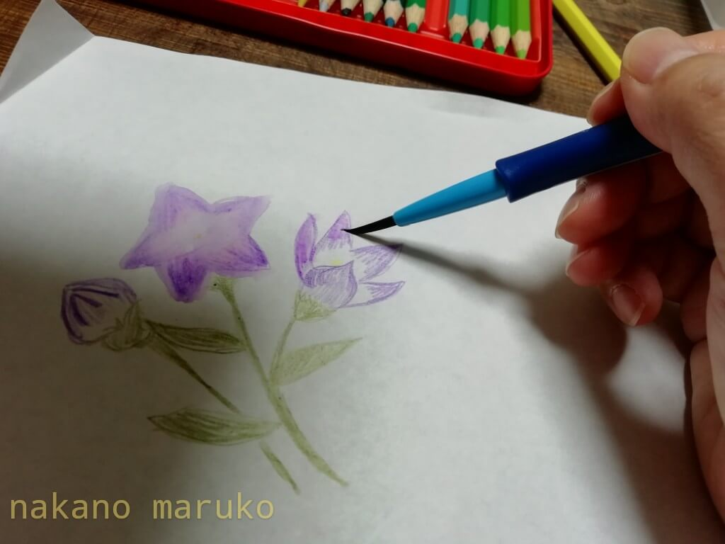f:id:nakanomaruko:20200822134457j:plain