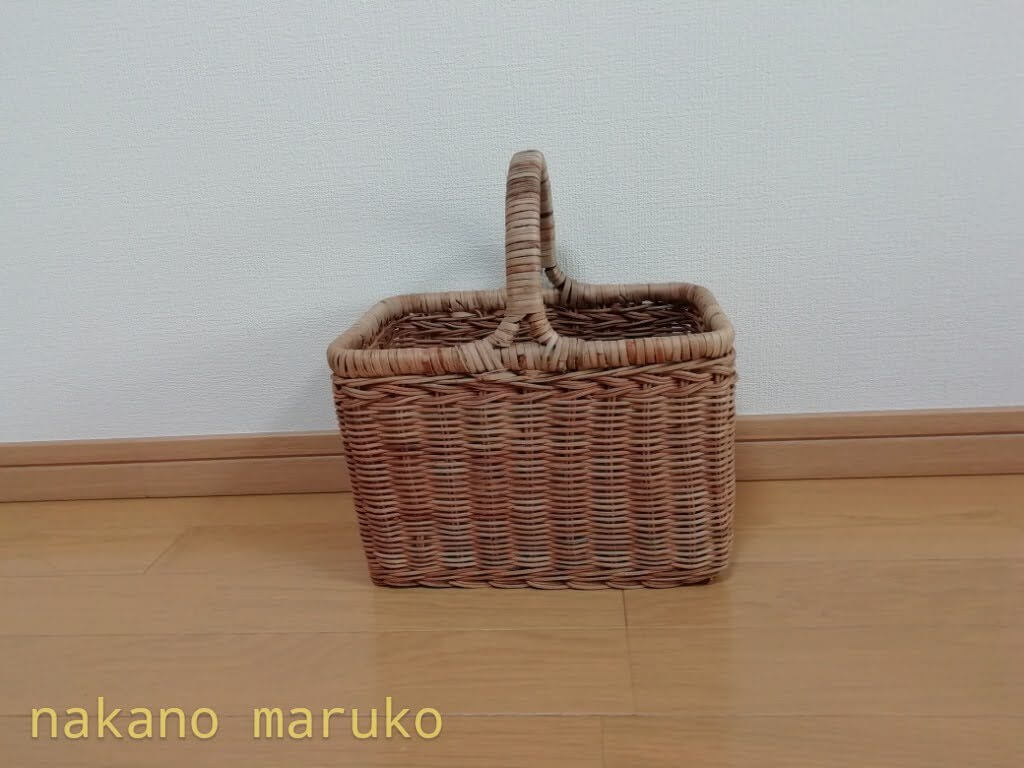 f:id:nakanomaruko:20210324123048j:plain
