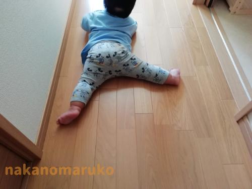f:id:nakanomaruko:20210607111037p:plain
