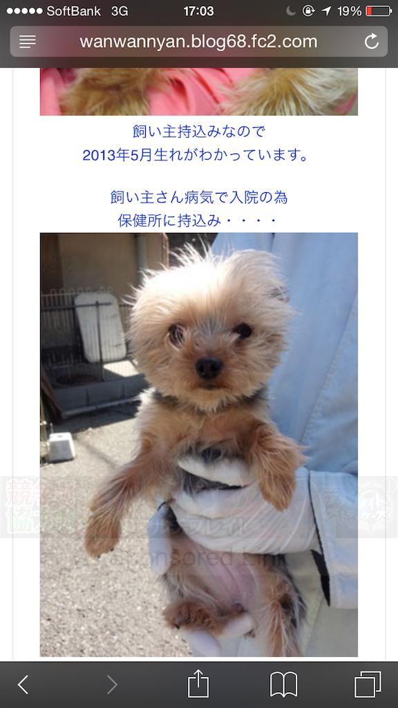 f:id:nakao1207:20180826072634p:image