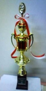 f:id:nakarin89:20110104202820j:image:right
