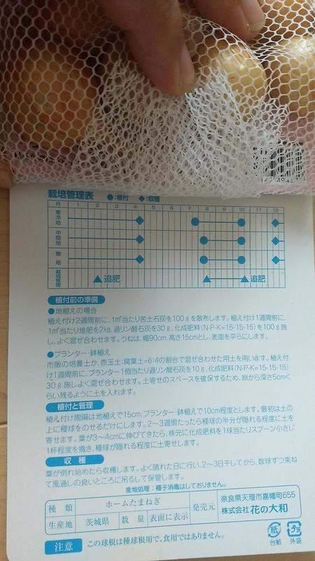 f:id:nakarobo:20210831074403j:plain