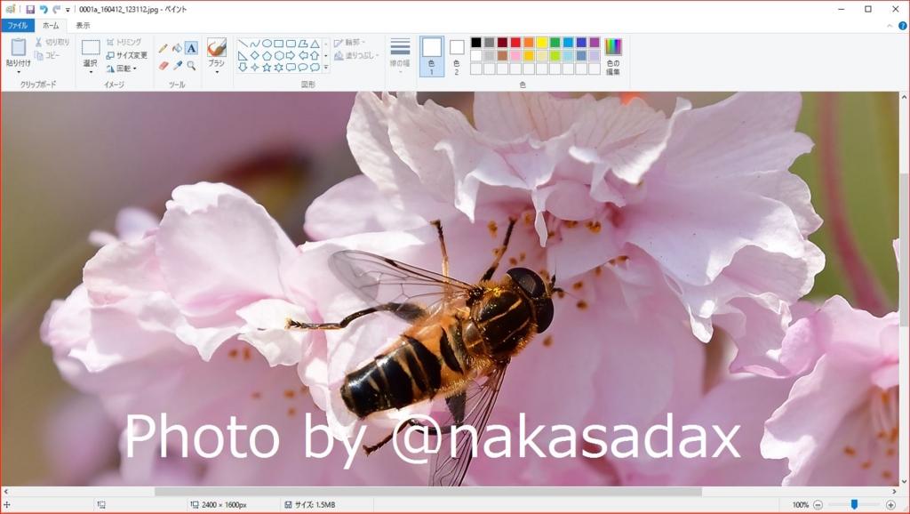 f:id:nakasadax:20170220190844j:plain