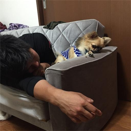 f:id:nakashima1483:20170207215628j:image