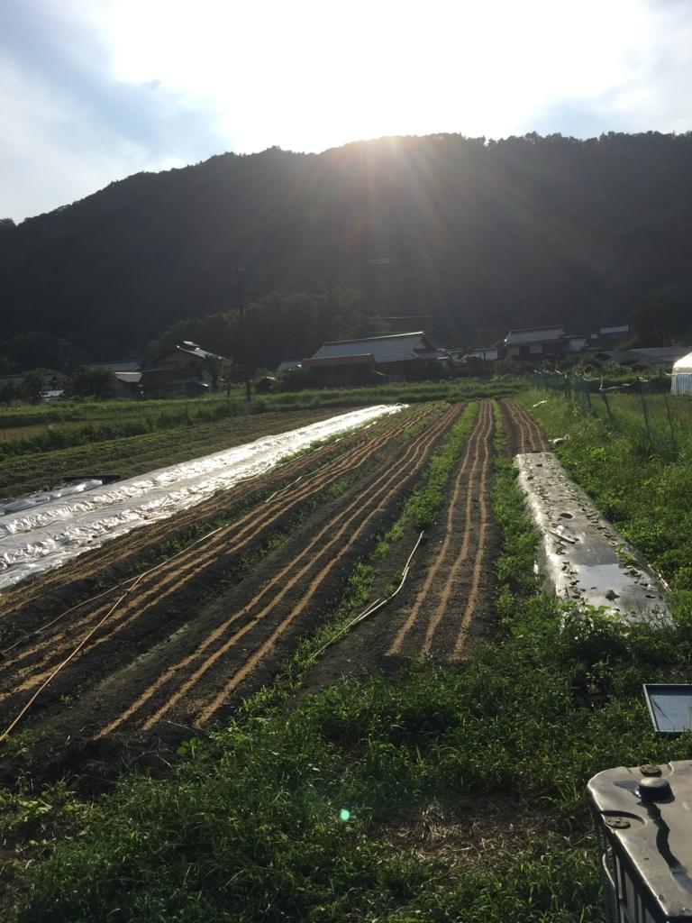 f:id:nakashimato:20170909163755j:plain