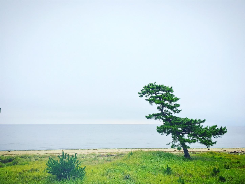 f:id:nakatakaori:20170815205949j:image