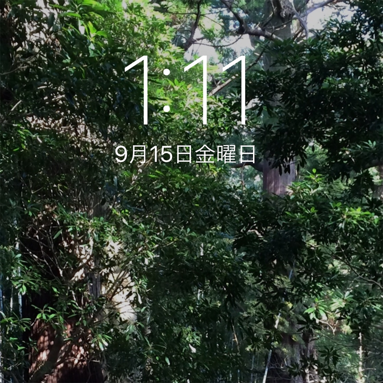 f:id:nakatakaori:20170915203312j:image