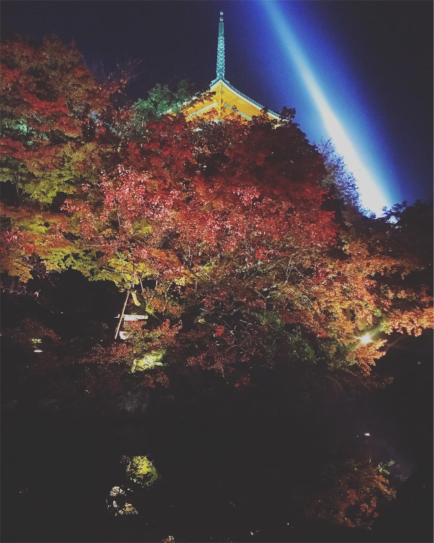 f:id:nakatakaori:20171111001021j:image