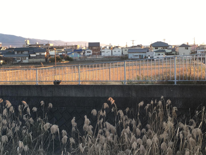 f:id:nakatakaori:20180117014950j:image