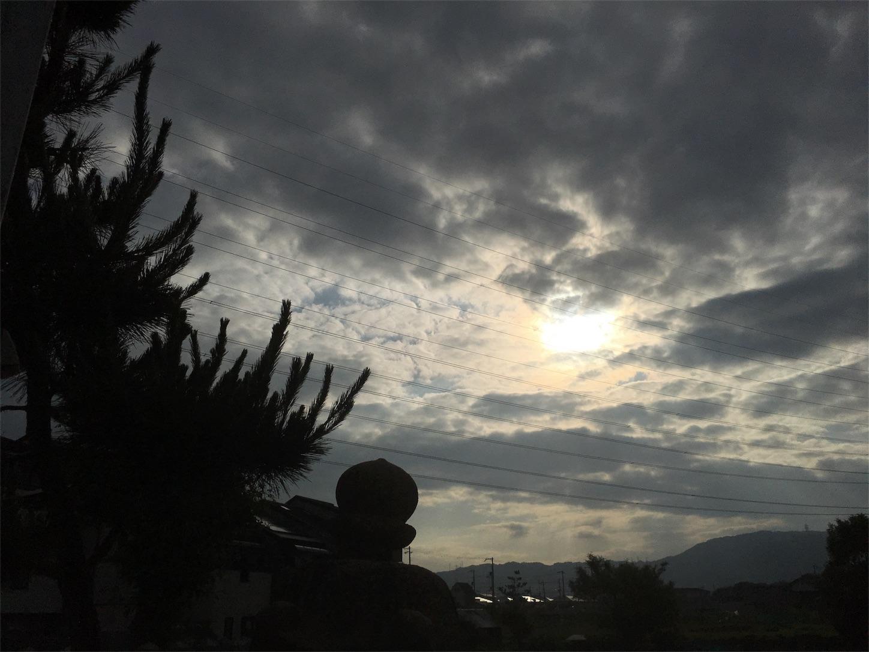 f:id:nakatakaori:20180602115441j:image