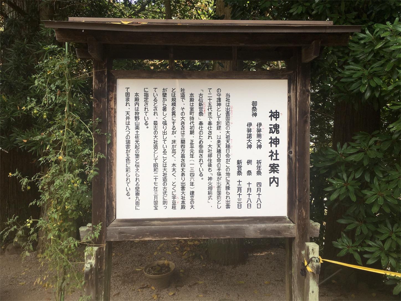 f:id:nakatakaori:20181122040027j:image