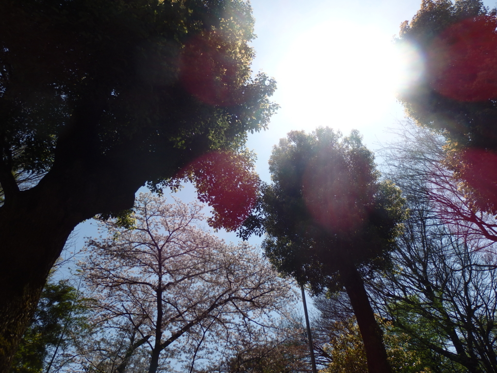 f:id:nakayama-att:20170415161514j:plain