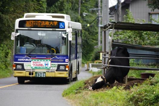 f:id:nakayamakaisoku:20200304184940j:plain