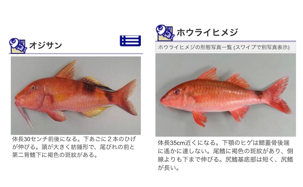 f:id:nakazawa-967:20180115141130j:image