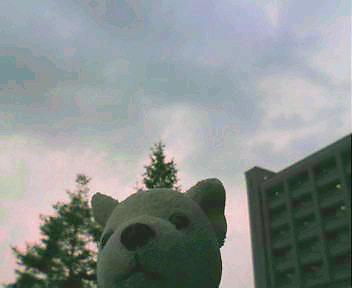 f:id:nakiboku:20090613230504j:image