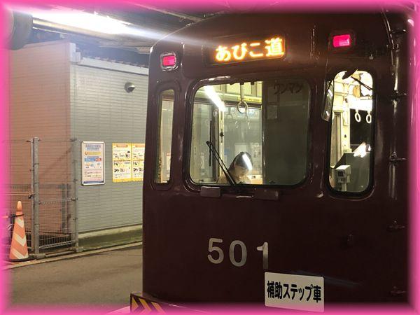 f:id:nakkacho902:20190908185950j:plain