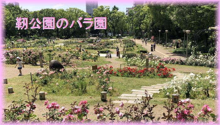 f:id:nakkacho902:20200520110912p:plain