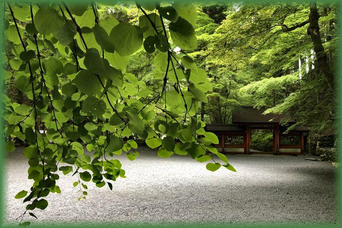 f:id:nakkacho902:20200526205610j:plain