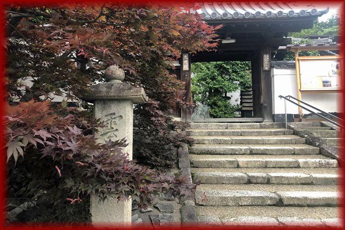 f:id:nakkacho902:20200616145731j:plain