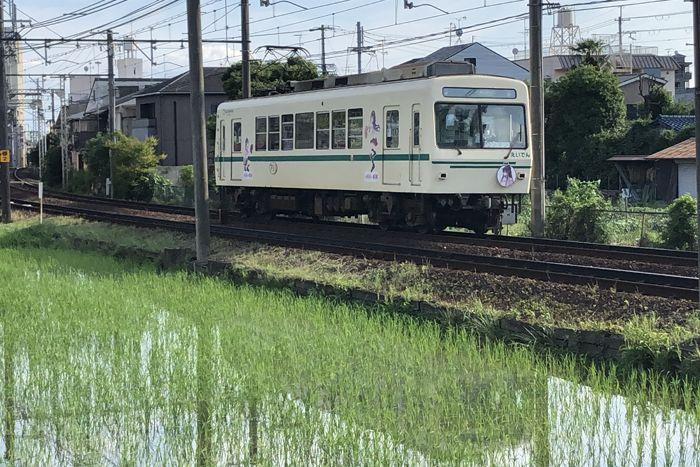 f:id:nakkacho902:20200621204838j:plain